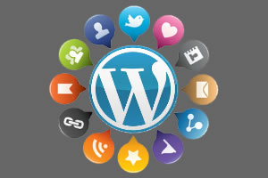 Marketing-Wordpress